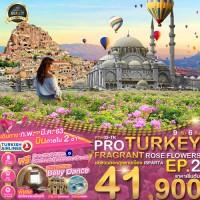 PRO TURKEY FRAGRANT ROSE FLOWERS